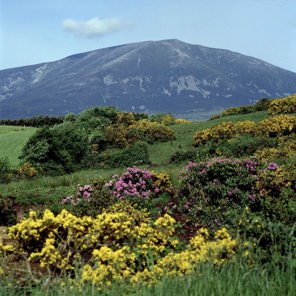 Nephin Mountain Mayo Ireland