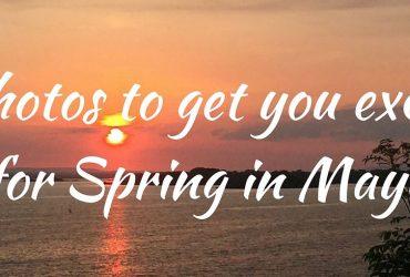 Spring in Mayo photos Kilcummin Killala Downpatrick Head