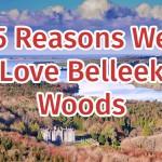 5 Reasons We Love Belleek Woods