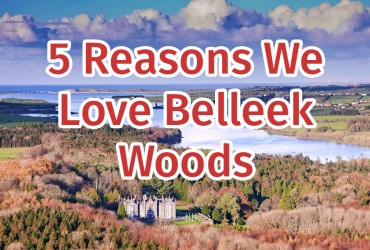 Belleek Woods, Ballina Belleek Forest Park Mayo