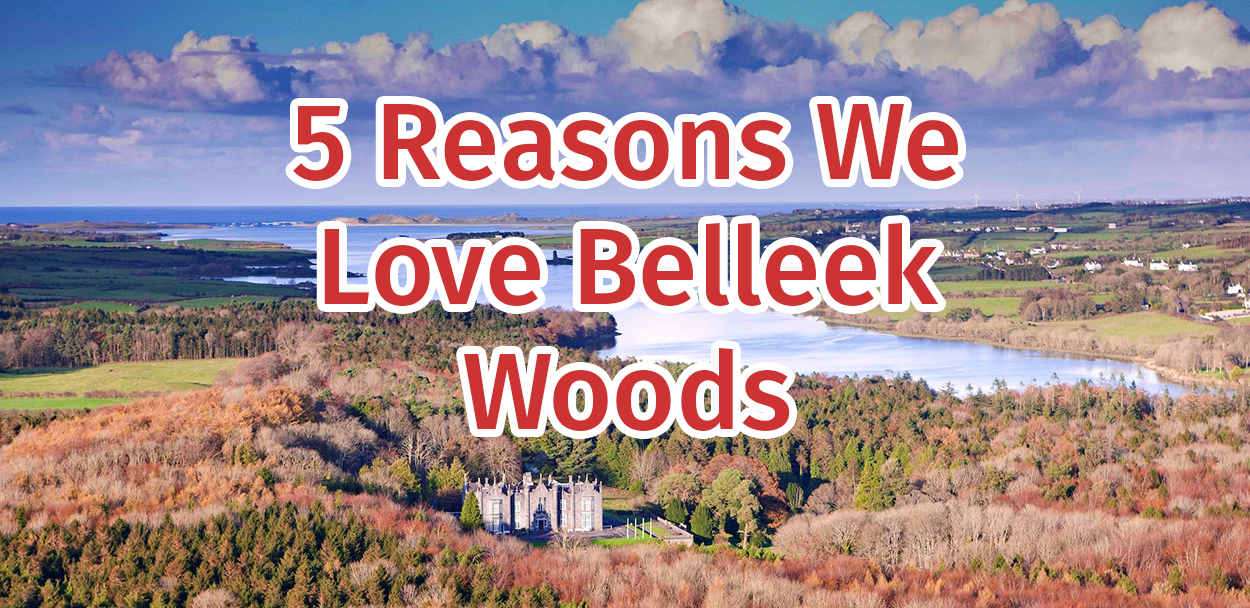 Belleek Woods, Ballina Belleek Forest Park Mayo