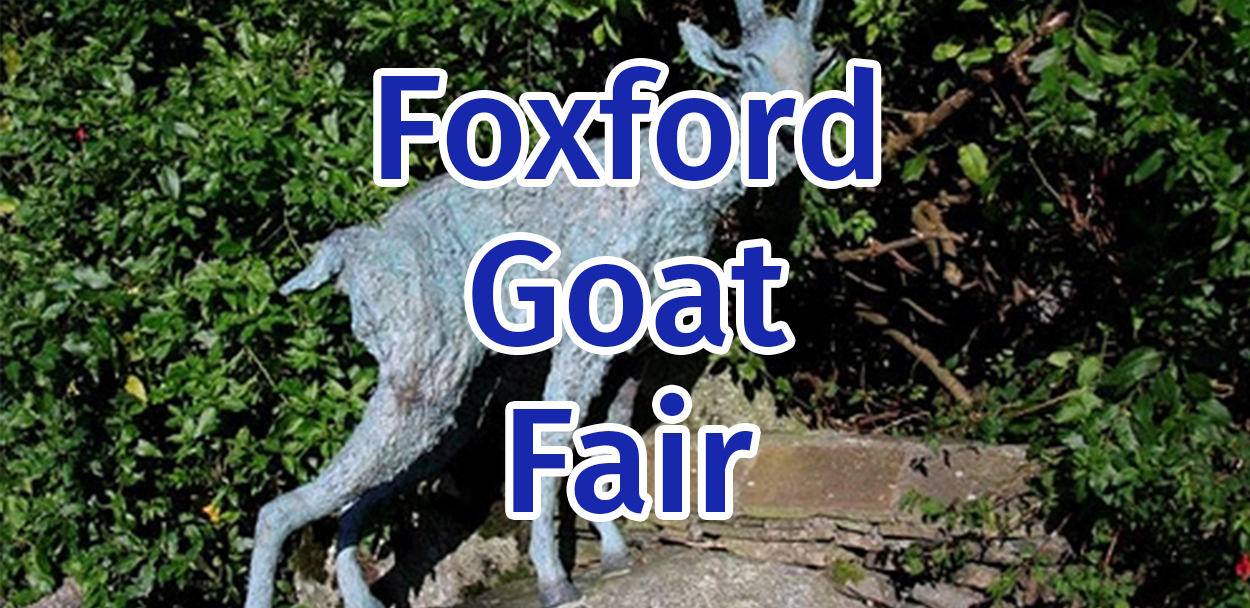 Foxford Goat Fair