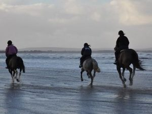 things to do in mayo north with children horse riding