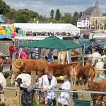 Swinford Agricultural Show, Saturday 1st September 2019