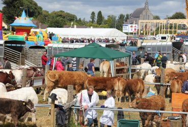Swinford Agriculutural Show