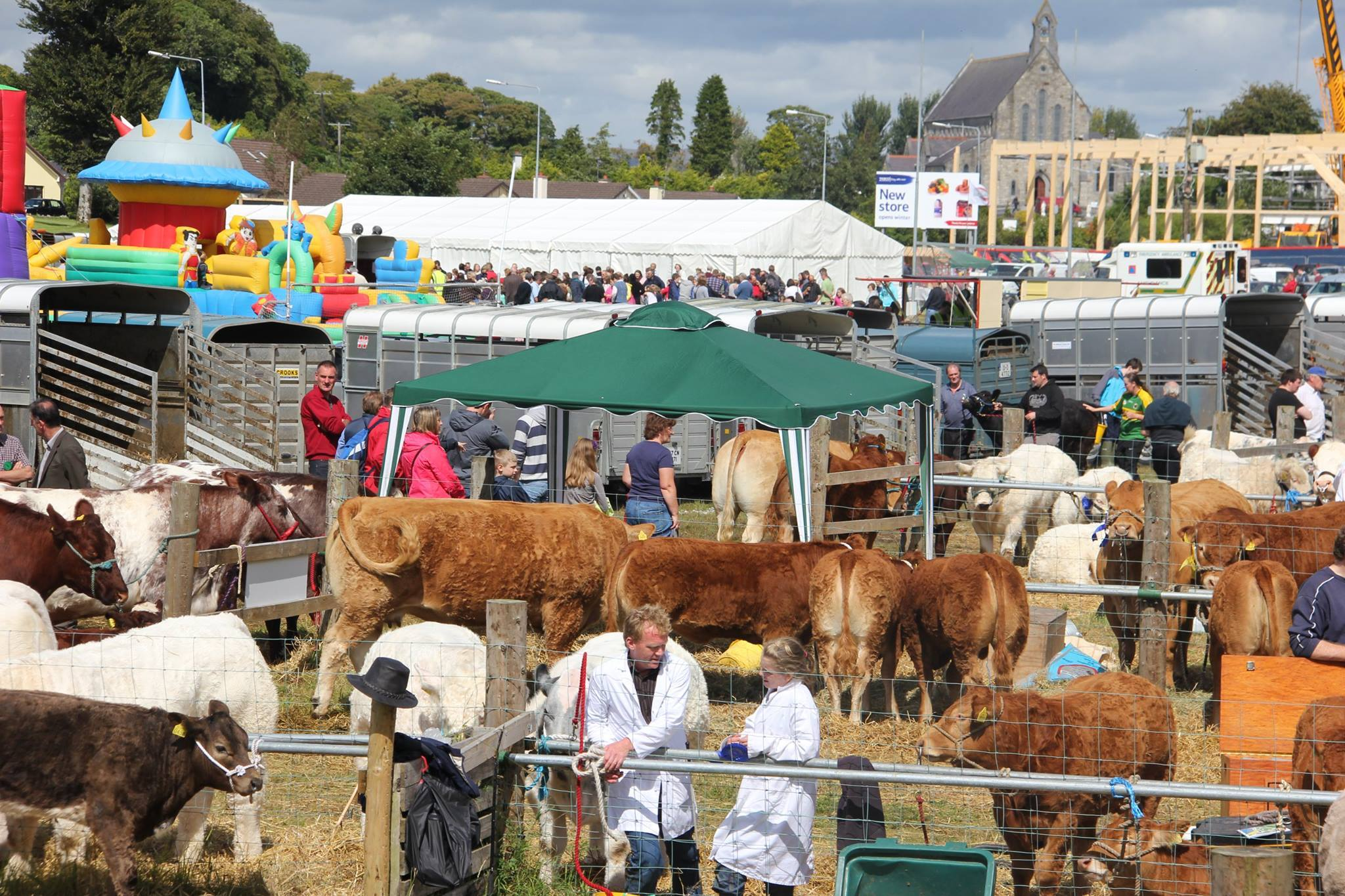 SSwinford Agricultural Show 2019