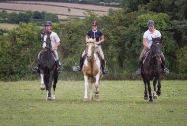 barnfield equestrian centre