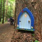 Visit the tiny residents of the Belleek Woods Fairy Trail, Ballina