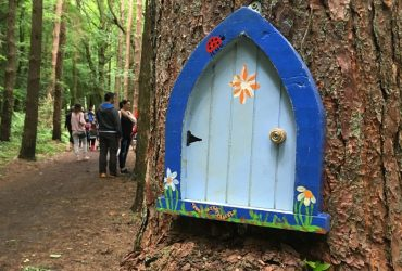 Belleek Woods Fairy Trail, Ballina, Co. Mayo