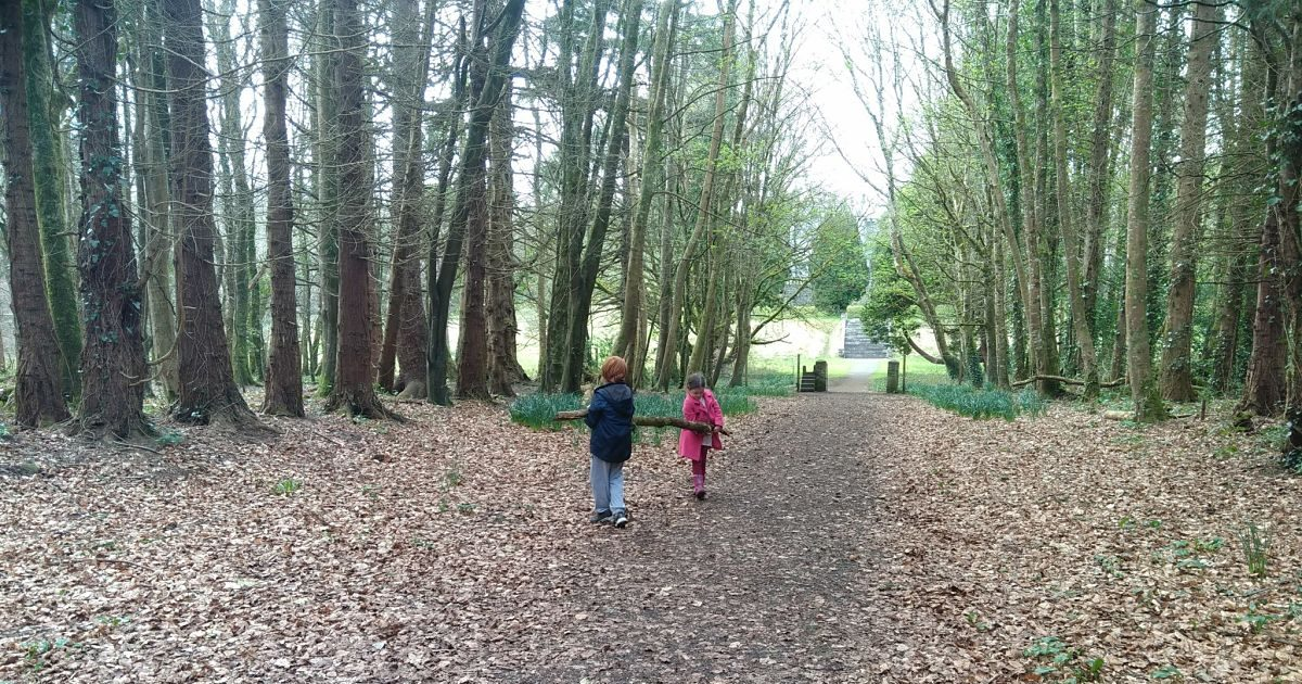 Belleek Woods Ballina Mammy Red Head Family Friendly Sites to Visit in North Mayo Family Friendly things to do in North Mayo Fun for Children in North Mayo