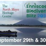 Enniscoe BioDiversity Blitz – 29th and 30th September