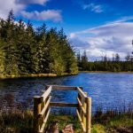 Sun shines on official opening of Moygownagh's Blanemore Forest Walk