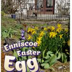Enniscoe Easter Egg Hunt – 21st April 2019