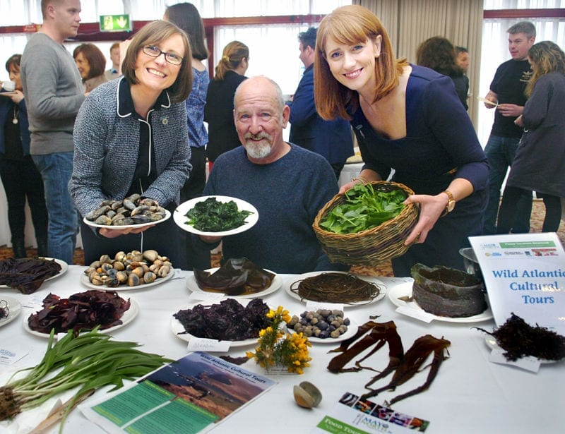 Denis Quinn Wild Atlantic Cultural Tours seashore foraging at the first Mayo North Food Tourism Seminar