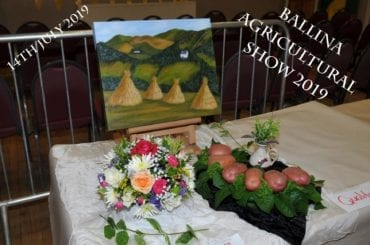 Ballina Agricultural Show