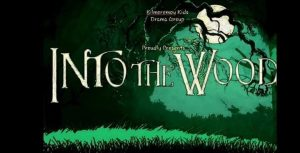 'Into The Wood' by Kilmoremoy Kids Drama Group 23rd November