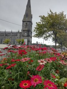 St Muredachs Cathedral - Ballina Bench Trail No 1