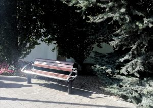 Lower Pearse Street Bench 8