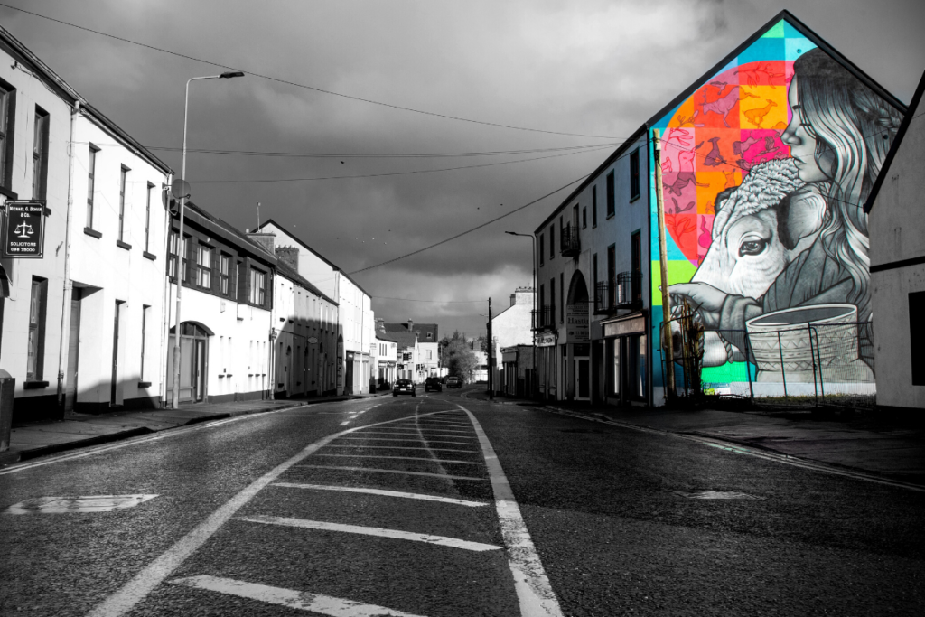 #PureBallina The Táin Wall,Teeling Street. Created by street artist Friz as part of Ballina Fringe Festival 2019. © Shutter Fever Photography