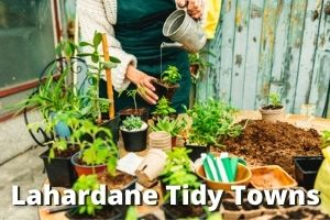 Lahardane Tidy Towns